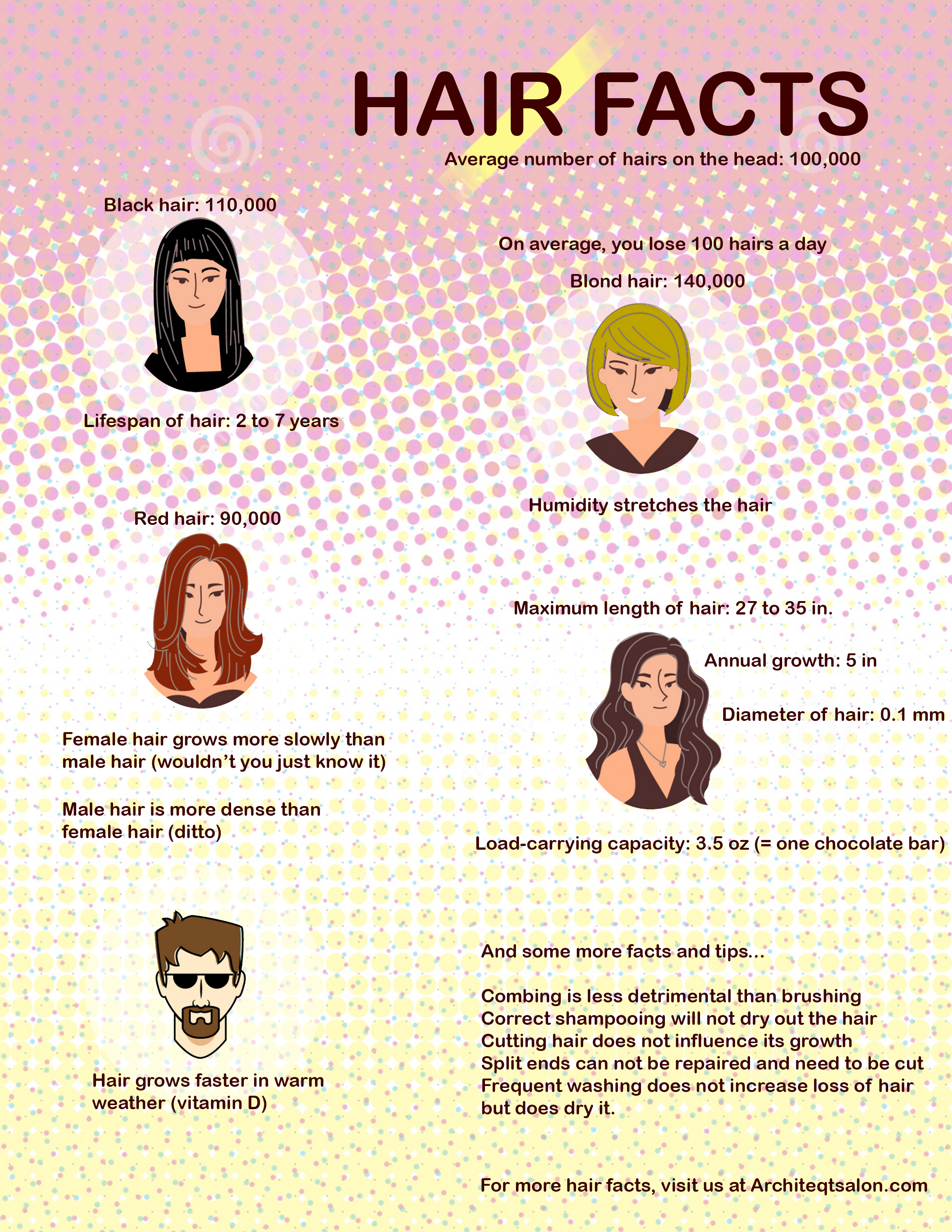Hair Facts Info Graph Architeqt Salon And Gallery